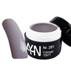 Gel couleur 291 Dove